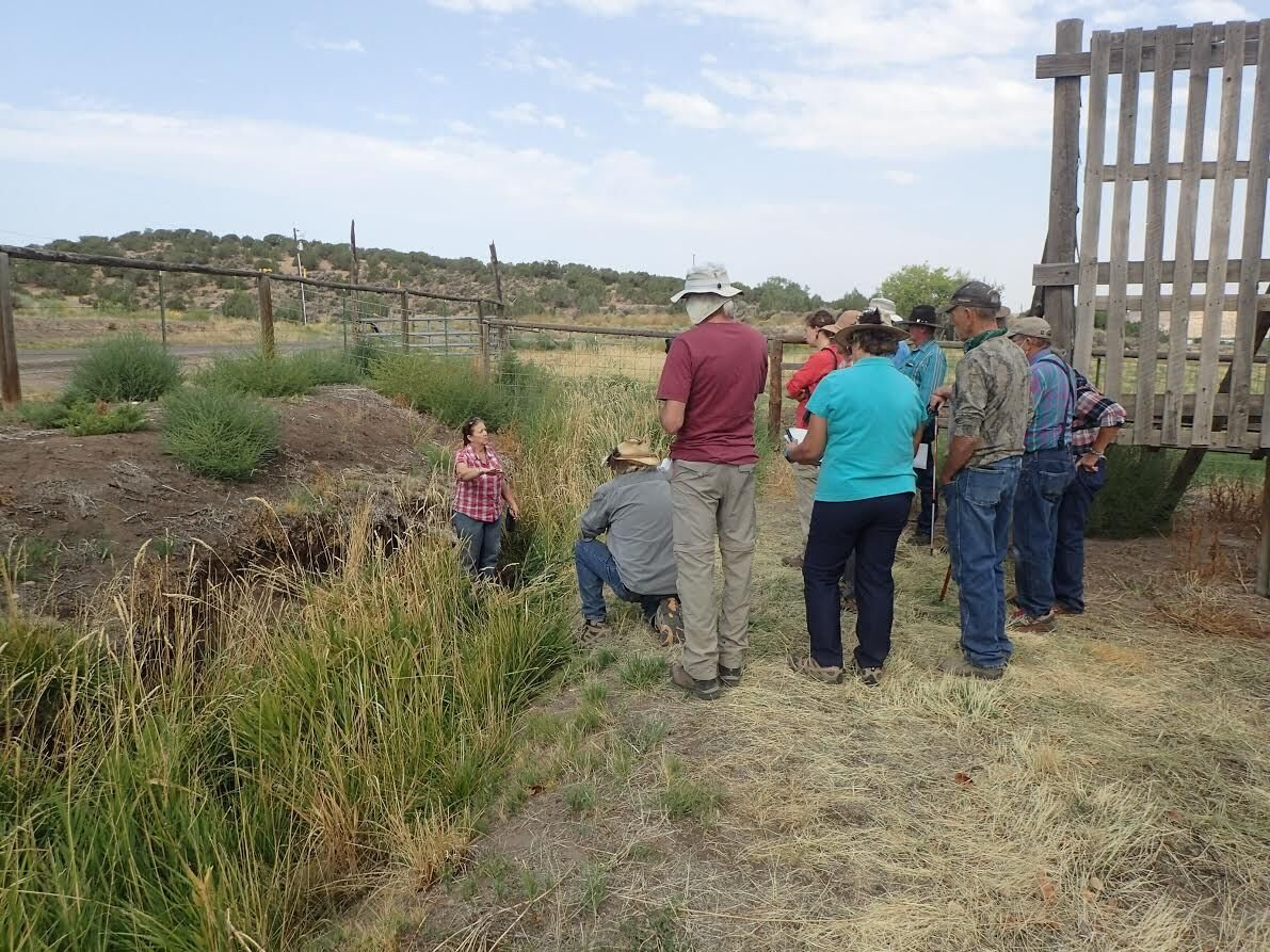 Archaeologists giving Shavano Valley sites a second look