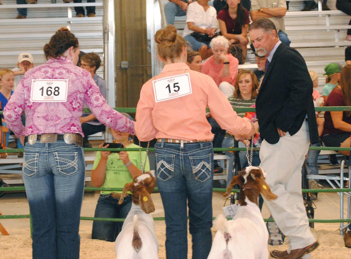Goat show judge (small)