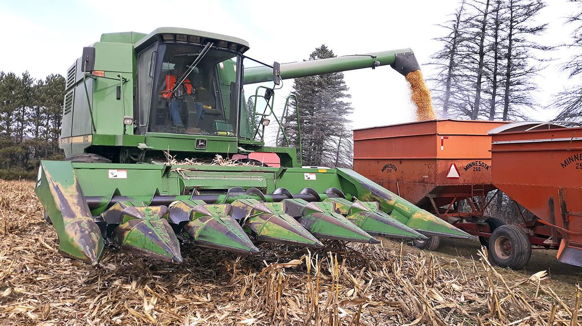 Corn, soybean yields better than farmers expected