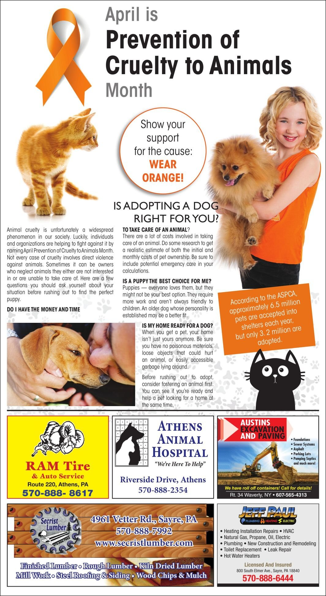 4.9 Animal Cruelty Page
