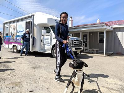 Intern finds home away from home at Animal Care Sanctuary during pandemic