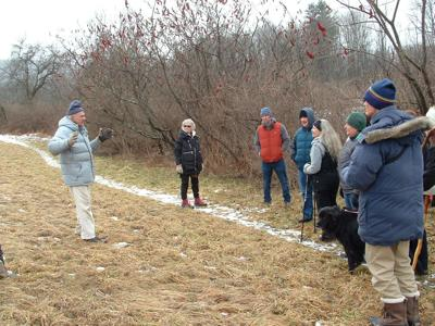 Greenway hosts wetlands and woodland hike