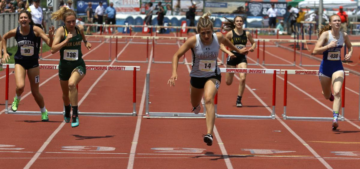 Athens' Hutchison wins state gold