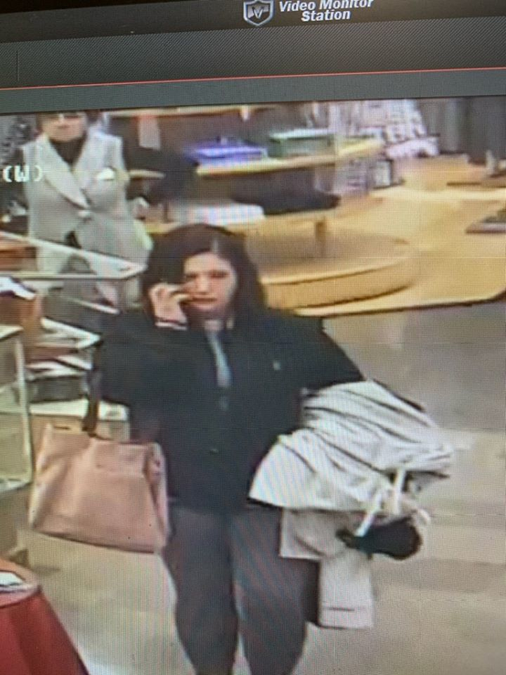 North Olmsted theft