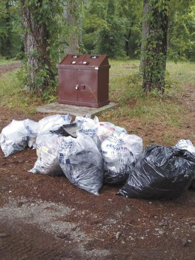 History and Preservation Society takes part in countywide cleanup