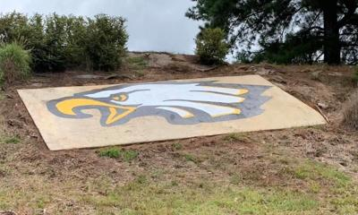 Moulton muralist asked to paint ELHS Eagle