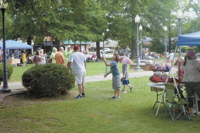 Courtland's 43rd annual Picnic in the Park happening Saturday