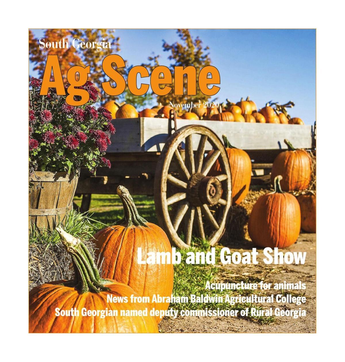 Ag Scene, November 2020
