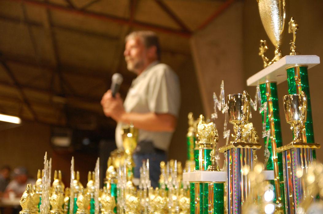 Shiny awards at fair