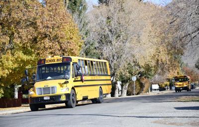 Bellevue School Bus