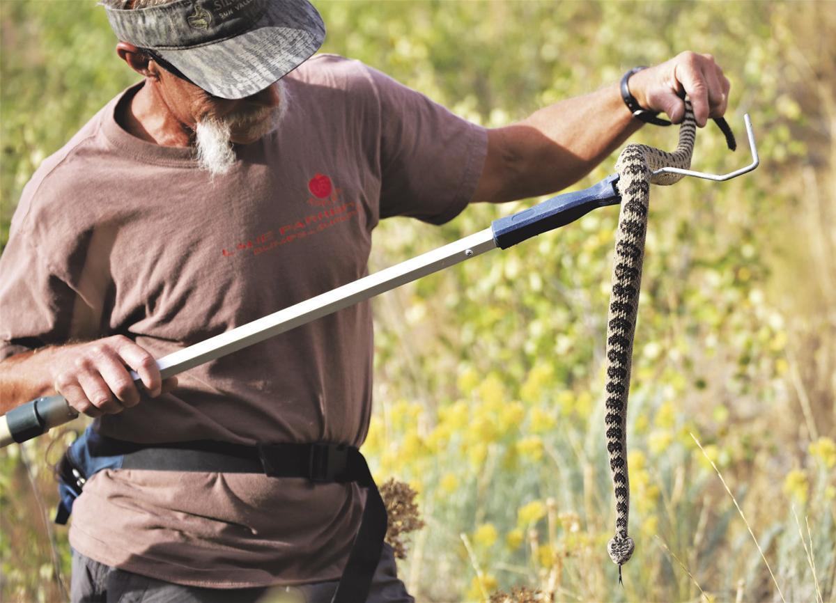 19-09-20 snake1.jpg