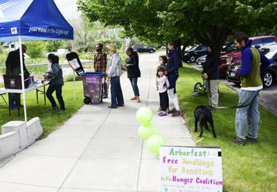 Arborfest 2020 Seedling Hope Garden