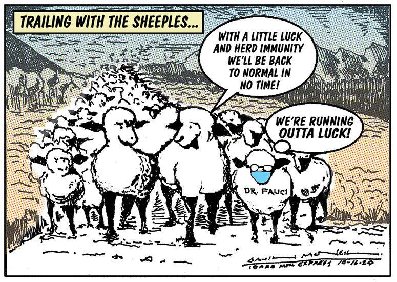 Herd Immunity | Cartoon | mtexpress.com