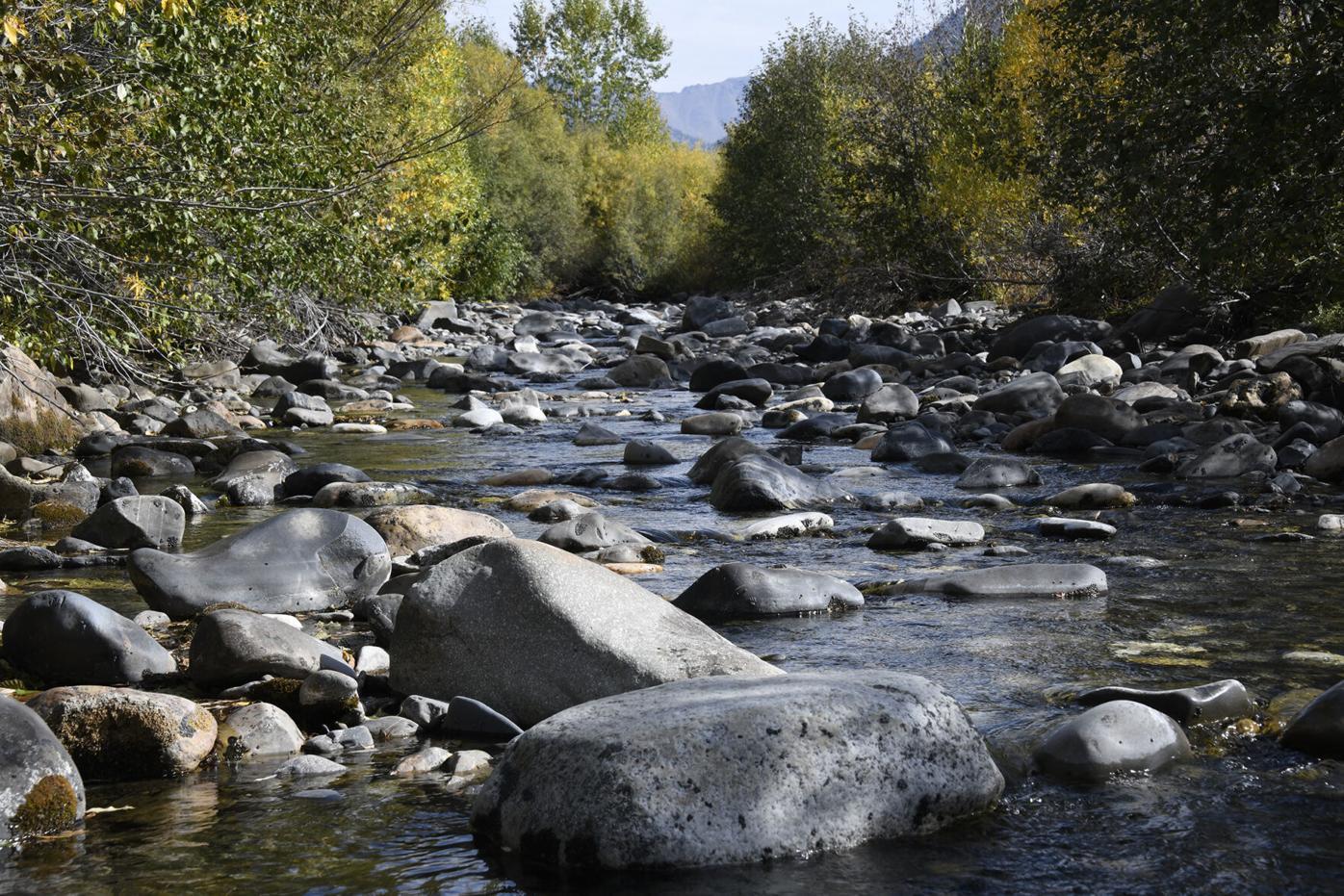 Trail Creek Drought