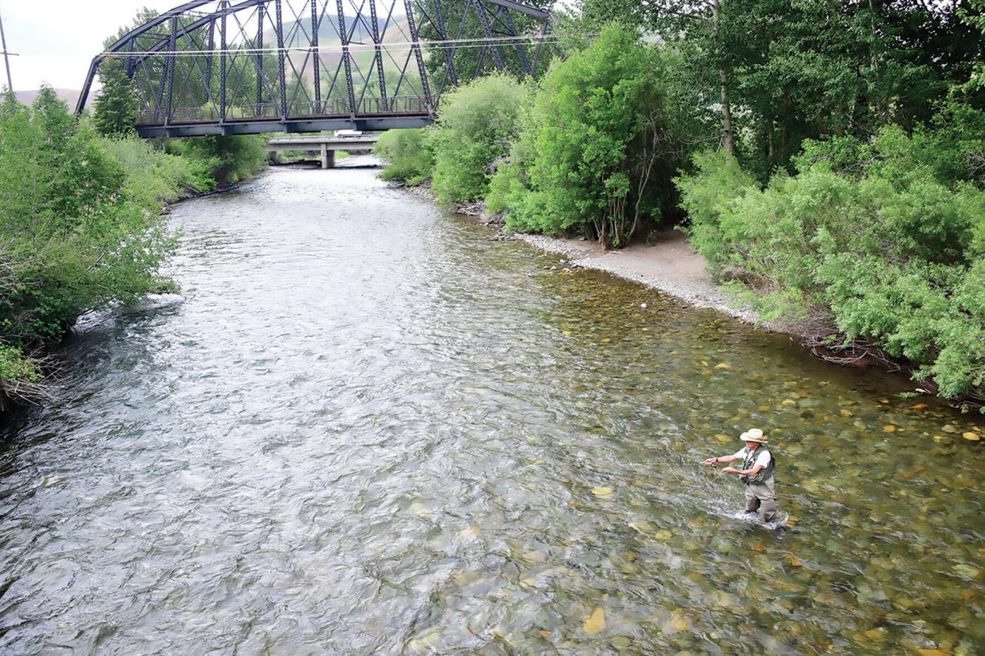 20-07-08 Bigwood river Fishing 3 Roland.jpg