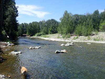21-07-14 river restoration pg 7.jpg