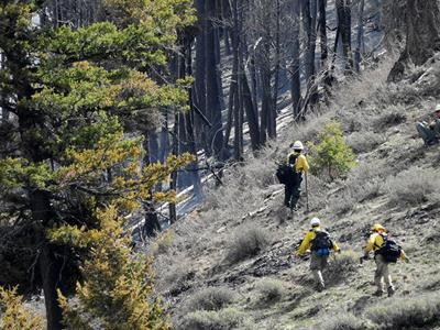 20-04-29 Fire Eastfork 1  Roland.jpg