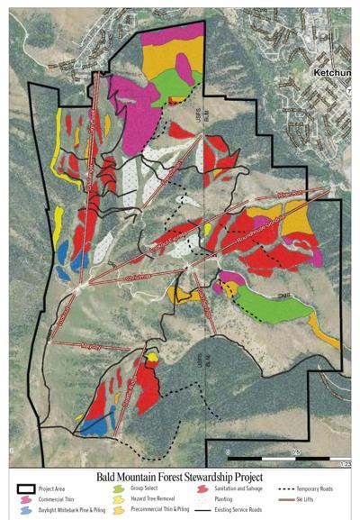 19-11-27 Baldy Forest map.jpg