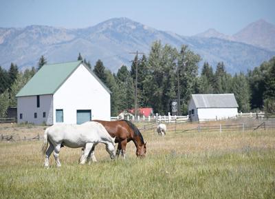 Reinheimer Ranch