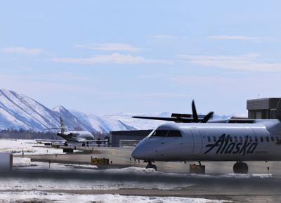 Friedman Memorial Airport (copy)