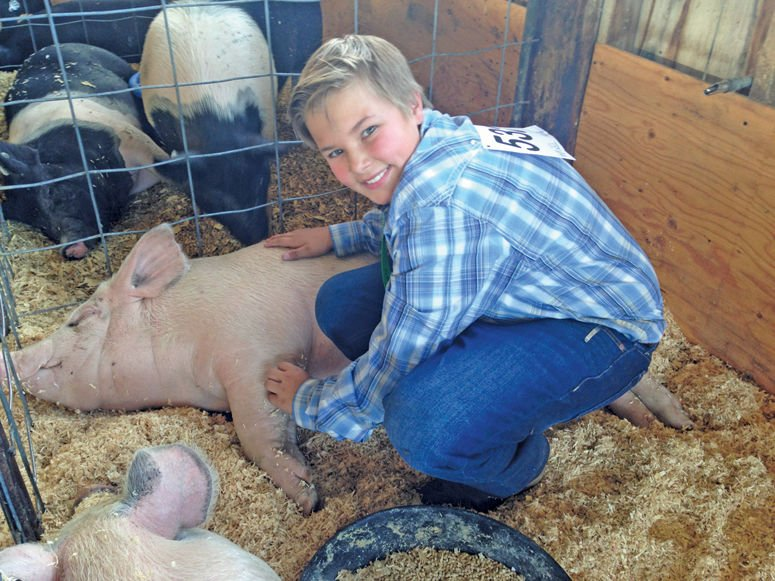 Blaine county kids raise 170000 at annual 4 h auction blaine 12 year old carter busdon poses with his 221 pound yorkshire cross pig harry porker which he personally raised as part of the blaine county 4 h program thecheapjerseys Images