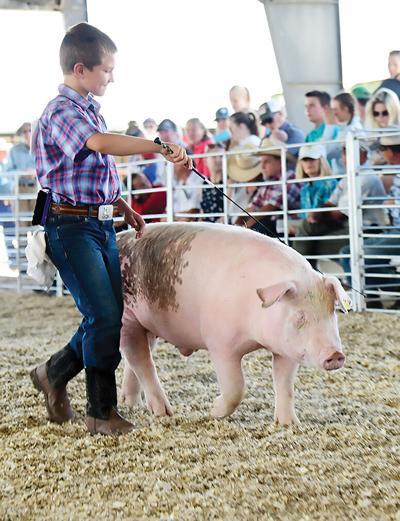 19-08-14 Blaine County Fair 1 Roland.jpg