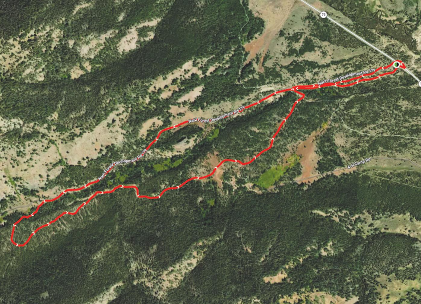 21-07-21 Fern Baird trail 1.jpg