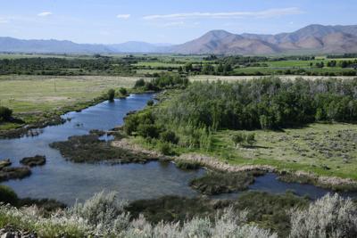 Silver Creek, June 2021