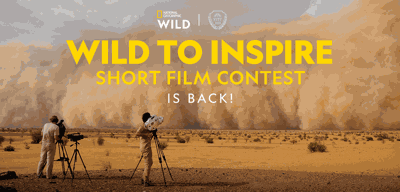 Sun Valley invites filmmakers to get wild | Arts | mtexpress com