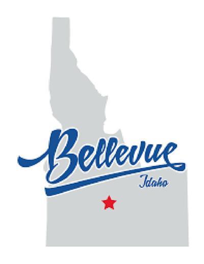 21-09-01 Bellevue Logo v3.jpg
