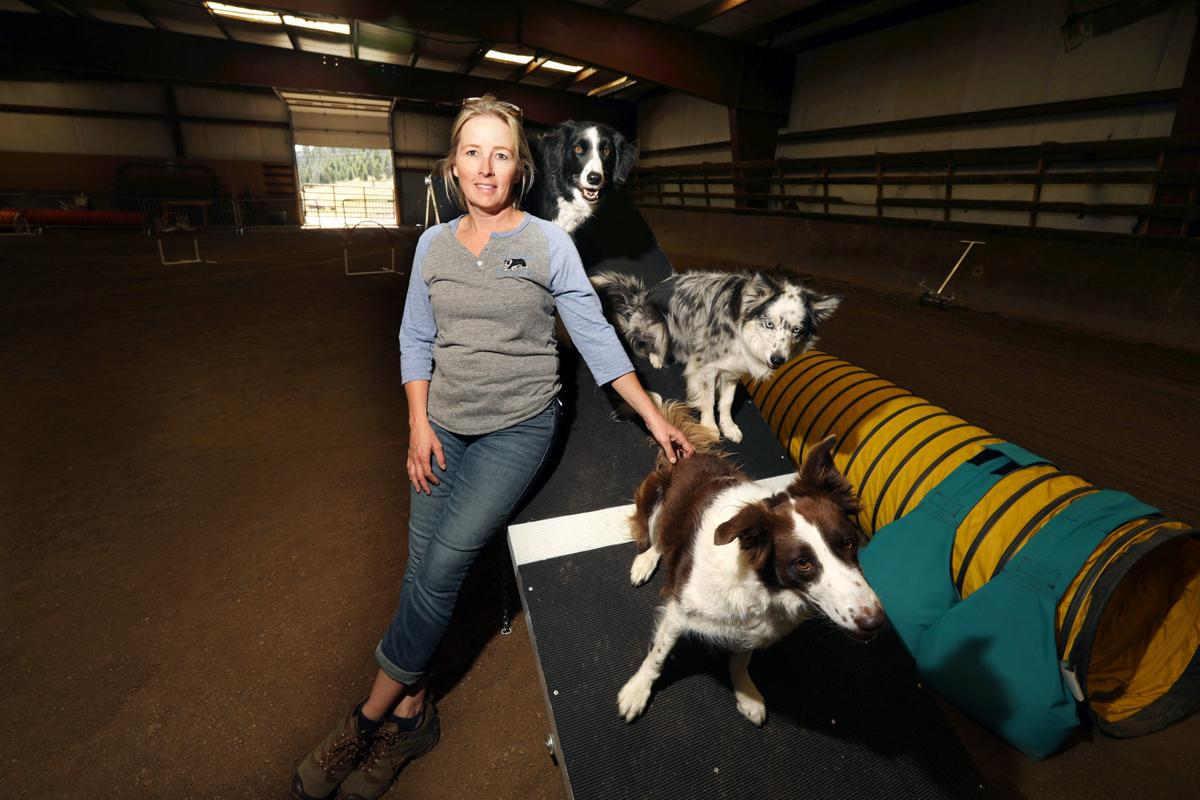 Fifth annual dog agility competition takes place Labor Day weekend in Butte