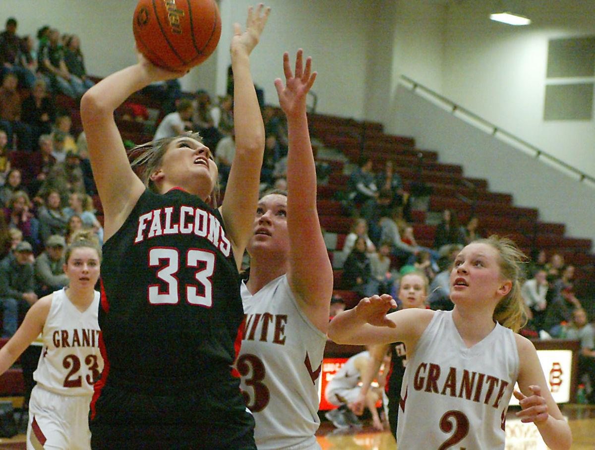 Falcons cropped for online