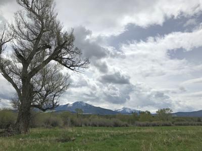 Absaroka view