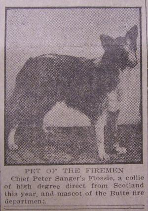 Mining City History: Butte's canine culture dates back to early days