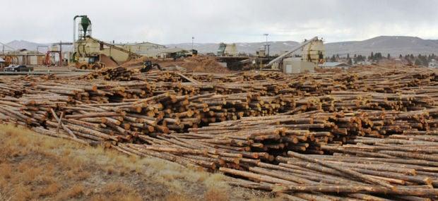 Sun Mountain Lumber