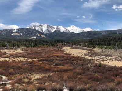 Moose Creek Headwaters property