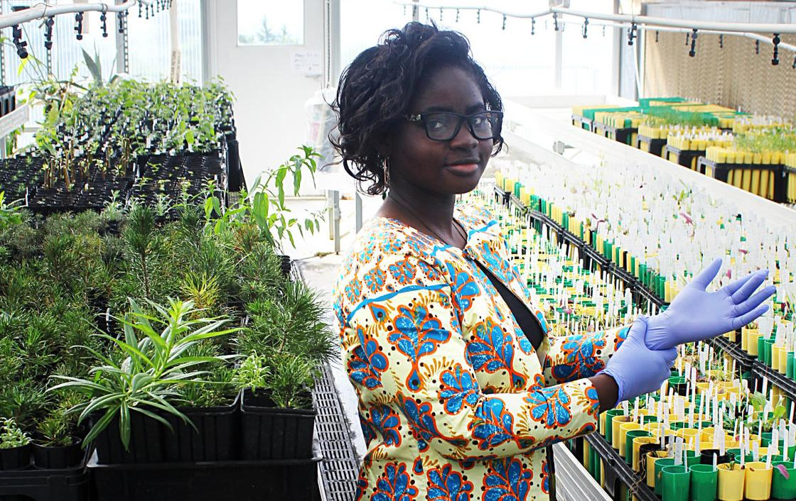 """I always want to challenge people"": Montana Tech student from Ghana receives prestigious scholarship"