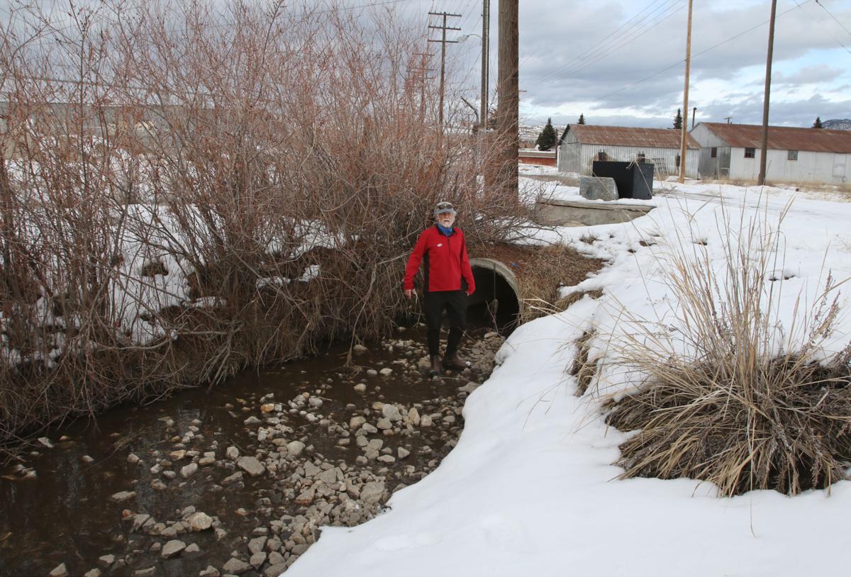 Buffalo Gulch Drainage.JPG
