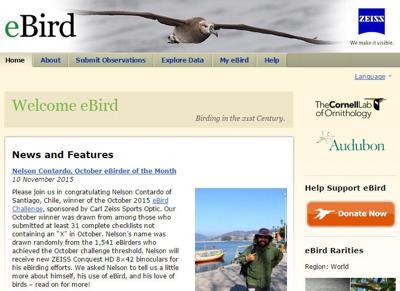 Montana Birding: Future of birding — eBird | Outdoors | mtstandard com