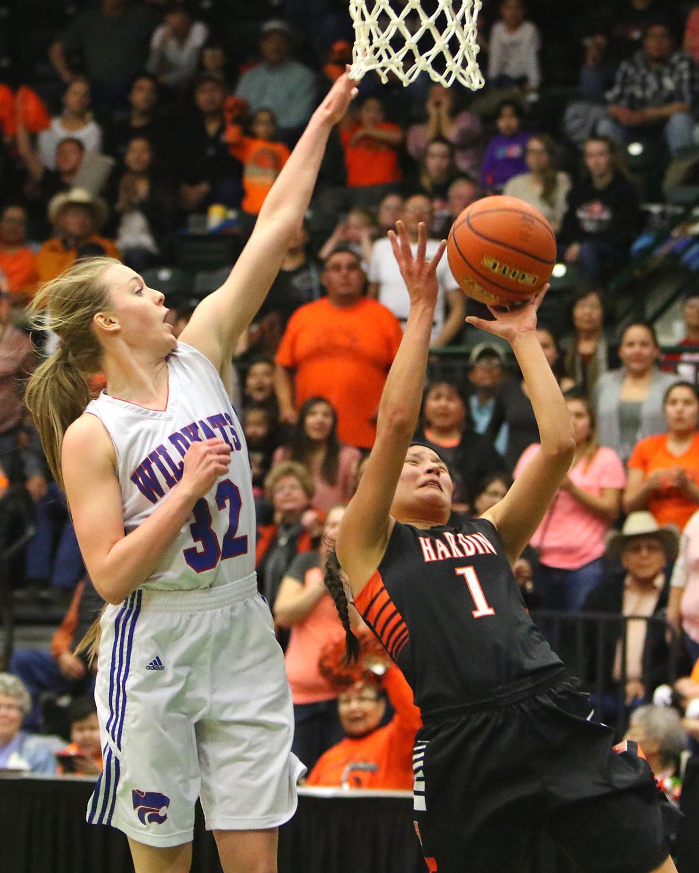 Columbia Falls Hardin Girls Championship