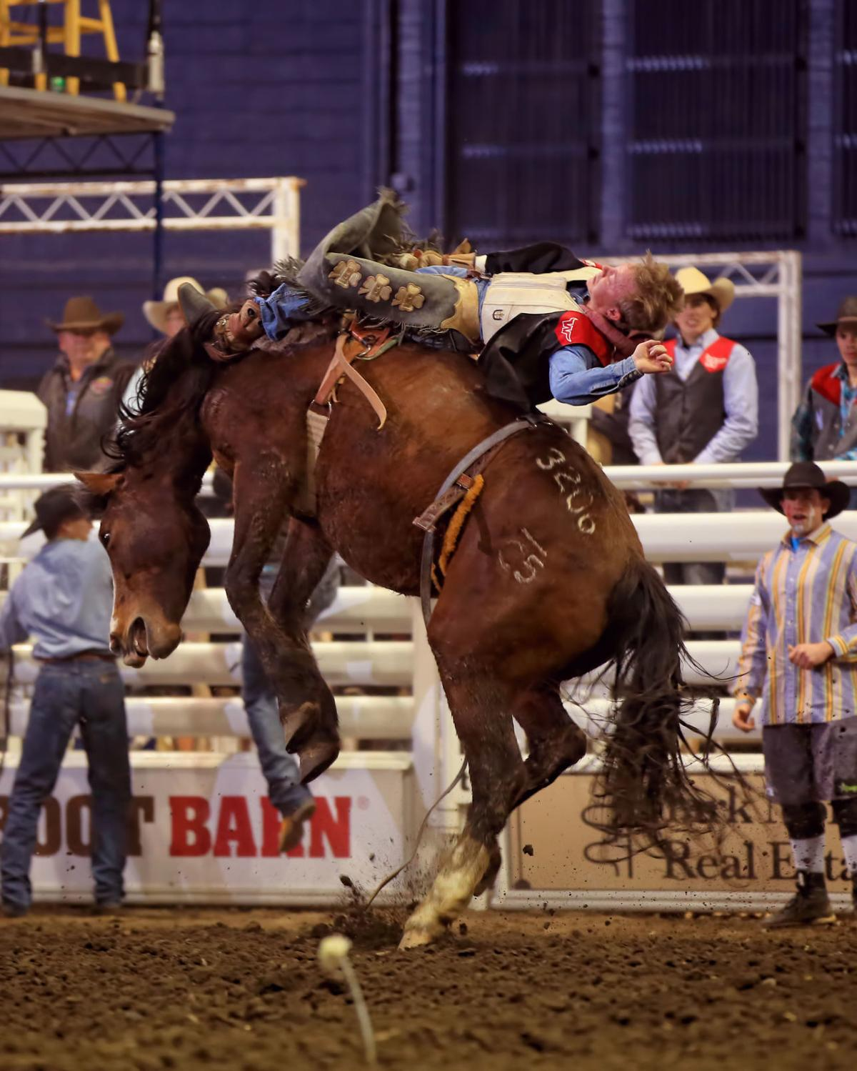 Cole Snider, Montana Western rodeo