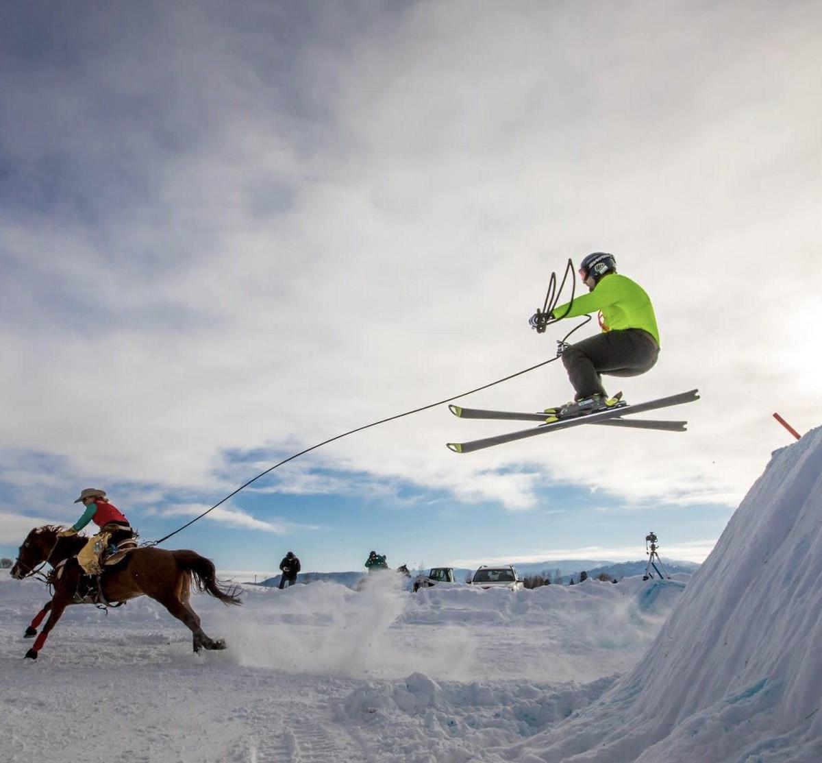 Skijoring 1