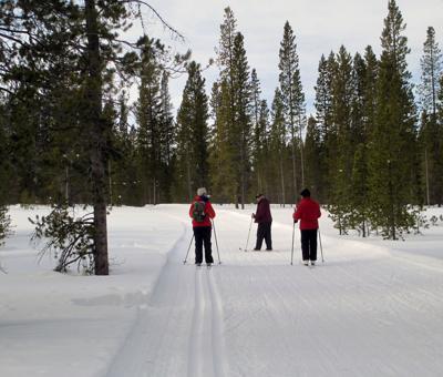 Ski program
