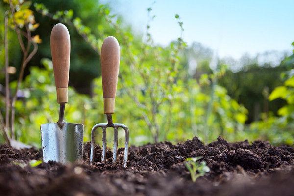 Master Gardener course starts Feb 29 in Butte Local
