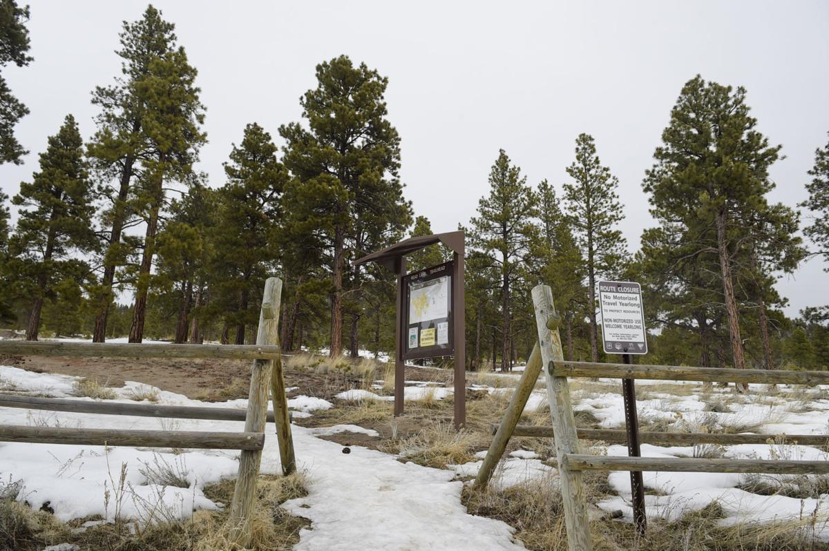 The Bureau of Land Management is seeking public comment about developing a managed nonmotorized trail system in the Scratchgravel Hills near Helena.
