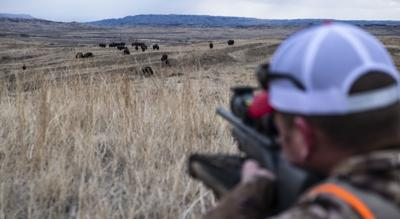 Eastern Montana prairie bison pursuit challenges wounded Marine veteran