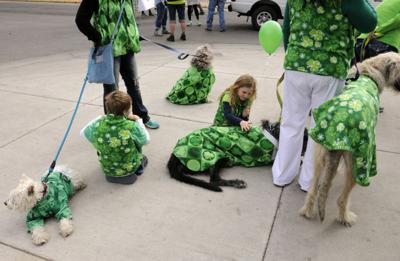 Butte-Silver Bow Animal Services Department: Keep your pets at home during Butte St. Patrick's Day celebrations