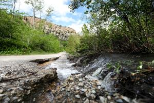 FWP briefly closes Lost Creek State Park due to flooding