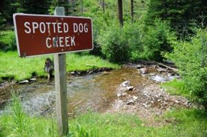 Comment wanted on plan to sell, buy public land near Deer Lodge