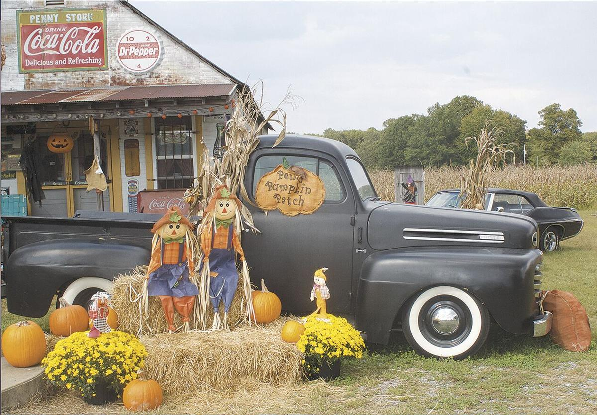 Local pumpkin patches start opening up for fall